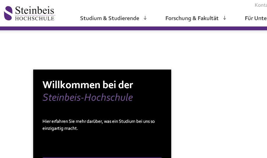 柏林斯泰恩拜(bai)斯大(da)學 Steinbeis-Hochschule-Berlin